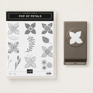 produktpaket POP OF PETALS stampin up
