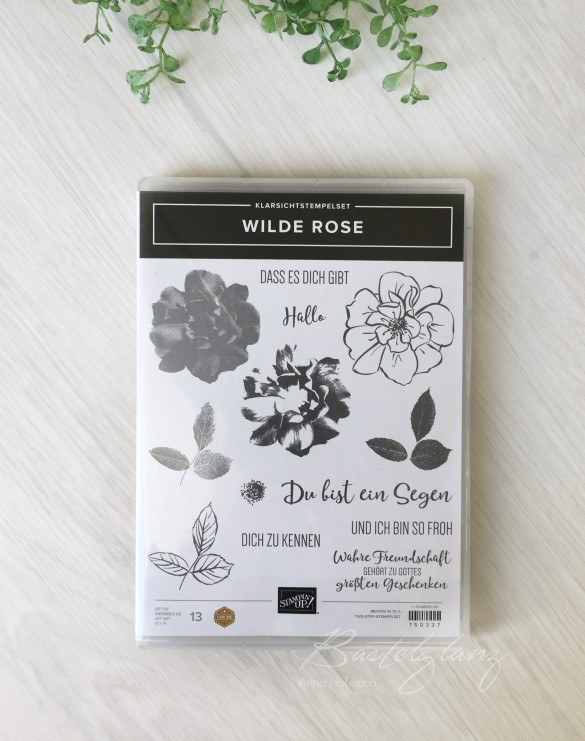 stampin up stempelset wilde rose